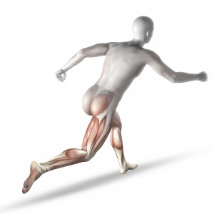 3D render of a male medical figure running with partial muscle map